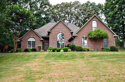 Horn Lake Single Family Home For Sale: 4201 Chelsea Circle