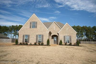 Southaven Single Family Home For Sale: 3436 Shiloh Lane