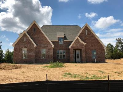Olive Branch Single Family Home For Sale: 6214 Chippewa Drive