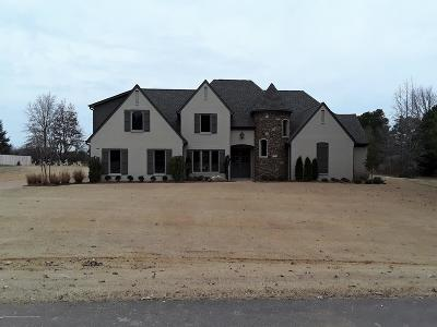 Desoto County Single Family Home For Sale: 9488 Honey Suckle Way