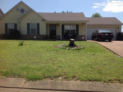 Horn Lake Single Family Home For Sale: 4079 Shadow Oaks Drive