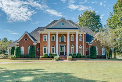 Byhalia, Hernando, Horn Lake, Olive Branch, Southaven, Walls, Holly Springs, Potts Camp Single Family Home For Sale: 3675 College Road