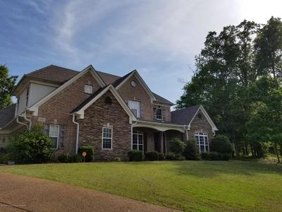 Southaven Single Family Home For Sale: 4085 Weladay Cv