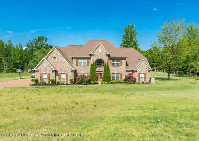 Desoto County Single Family Home For Sale: 1971 Saulsberry Creek Drive