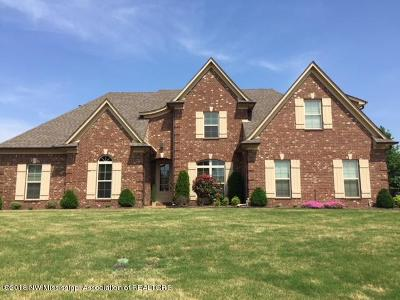 Southaven Single Family Home For Sale: 3808 Marcia Louise Drive