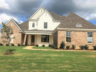 Southaven Single Family Home For Sale: 3714 Beech Tree Cove