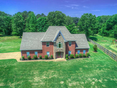 Southaven Single Family Home For Sale: 4567 Davis Road