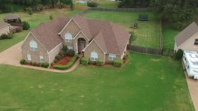 Southaven Single Family Home For Sale: 538 Long Street