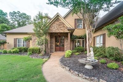 Southaven Single Family Home For Sale: 4182 Weladay Cove