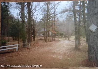 Byhalia Single Family Home For Sale: 987 Wall Hill Road