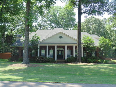 Olive Branch Single Family Home For Sale: 8529 Saddle Creek Drive