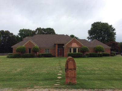 Olive Branch Single Family Home For Sale: 4480 Mary Jane Drive