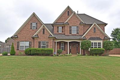 Olive Branch Single Family Home For Sale: 4860 Wedgewood Drive