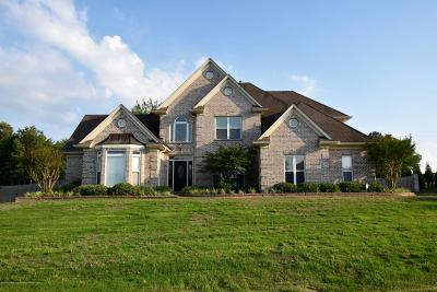 Olive Branch Single Family Home For Sale: 8595 Belmor Crossing Cove