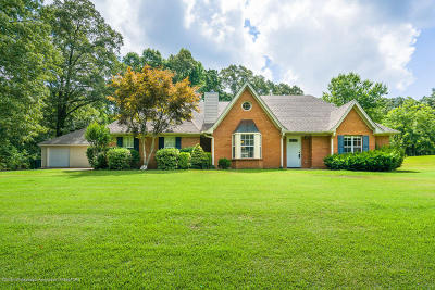 Southaven Single Family Home For Sale: 5240 Windy Ridge Drive