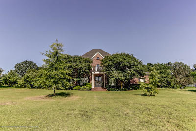Olive Branch Single Family Home For Sale: 512 Ross Road