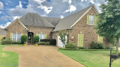 Southaven Single Family Home For Sale: 2691 Hill Valley Lane
