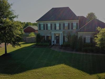 Olive Branch Single Family Home For Sale: 4159 W Three Hawks Drive