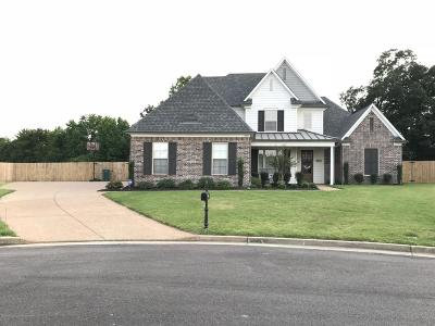 Southaven Single Family Home For Sale: 3583 Mimosa Cove
