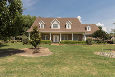 Southaven Single Family Home For Sale: 5294 Meadow Pointe Drive
