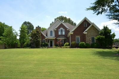 Desoto County Single Family Home For Sale: 13963 Canter Drive