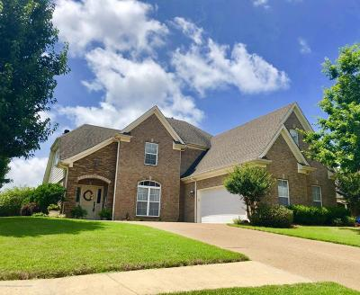 Southaven Single Family Home For Sale: 2933 Huntley Circle