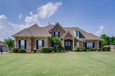 Olive Branch Single Family Home For Sale: 4970 Wedgewood Drive