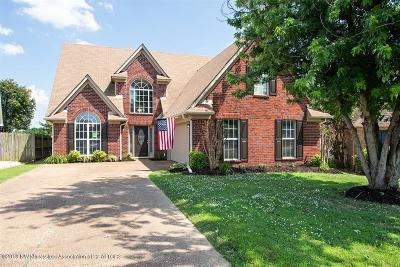 Olive Branch Single Family Home For Sale: 9255 Lakeshore Drive