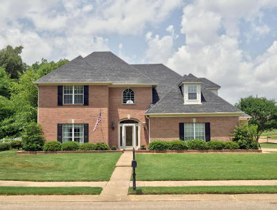 Olive Branch Single Family Home For Sale: 6502 Timber Oaks Drive