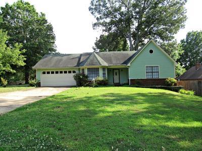 Walls Single Family Home For Sale: 6709 Tangleberry Cv