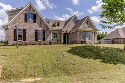 Olive Branch Single Family Home For Sale: 14314 Cantwell Drive