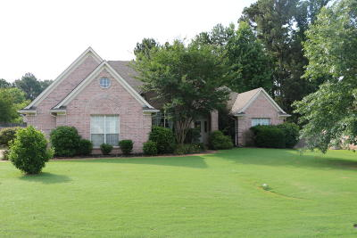 Olive Branch Single Family Home For Sale: 9793 Dorothy Drive