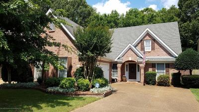 Olive Branch Single Family Home For Sale: 6557 Renee Drive