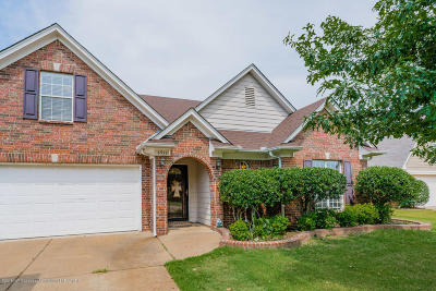 Olive Branch Single Family Home For Sale: 6911 White Hawk Lane