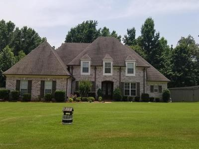 Southaven Single Family Home For Sale: 2523 College Road
