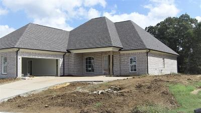 Southaven Single Family Home For Sale: 4530 W Vineyard Drive