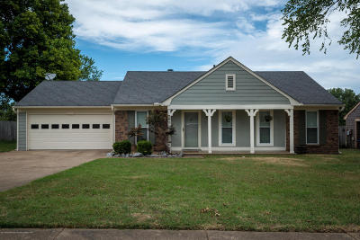 Horn Lake Single Family Home For Sale: 3820 Ivanhoe Drive