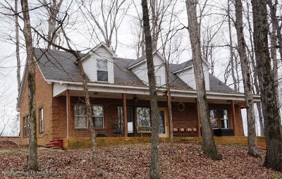 Desoto County Single Family Home For Sale: 8730 College Road
