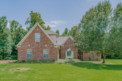 Olive Branch Single Family Home For Sale: 5839 Hayden Cove