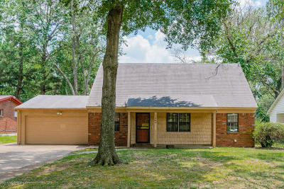 Southaven Single Family Home For Sale: 1367 Vicksburg Drive
