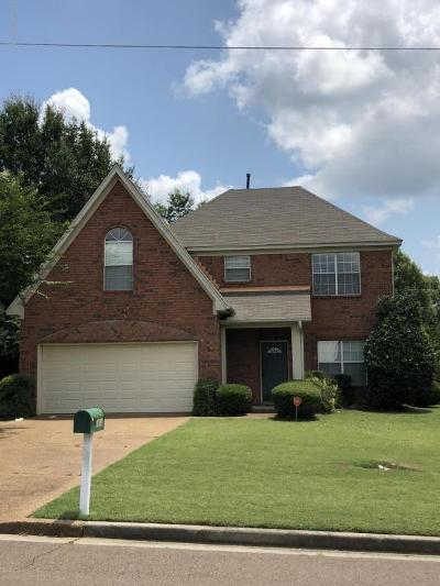 Olive Branch Single Family Home For Sale: 6058 Choctaw Trail