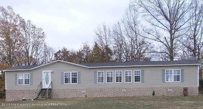 Marshall County Single Family Home For Sale: 906 Watson Desoto Road