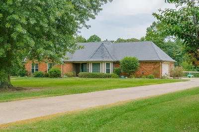 Desoto County Single Family Home For Sale: 6095 Nellwood Drive