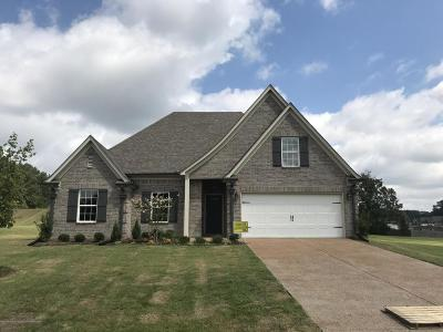 Southaven Single Family Home For Sale: 2306 Christian Lane