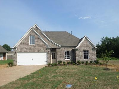 Tate County Single Family Home For Sale: 205 Eagle Cove