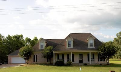 Desoto County Single Family Home For Sale: 4828 W Stateline Road