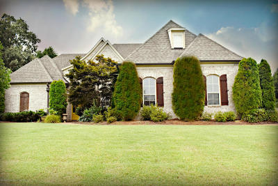 Desoto County Single Family Home For Sale: 2475 College Road
