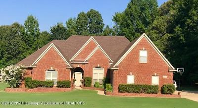 Desoto County Single Family Home For Sale: 6237 Autumn Point