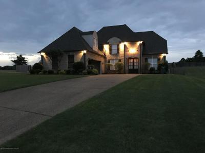 Desoto County Single Family Home For Sale: 3773 Cherry Lake Cove