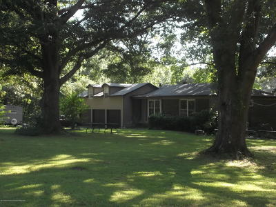 Hernando Single Family Home For Sale: 860 Green Acres Drive